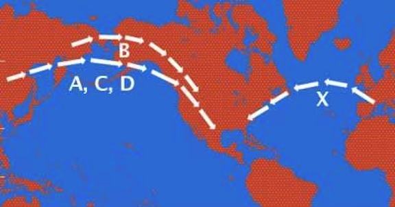 Genetic Research « TranspacificProject com