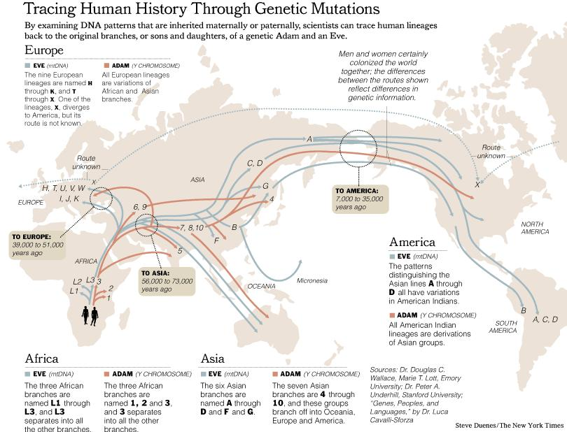 New York Times Map Of Migration Of Dna Lineages