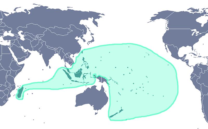 Transpacific Migrations TranspacificProjectcom - Polynesian migration map oceania