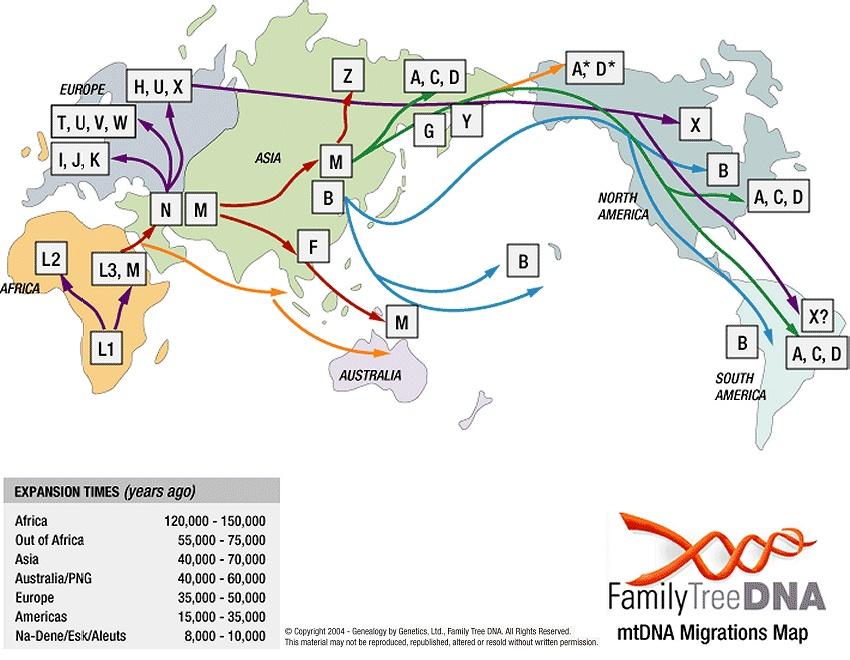 Mitochondrial DNA haplogroups migration map